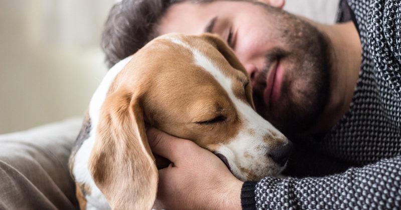 sleep with dog FI