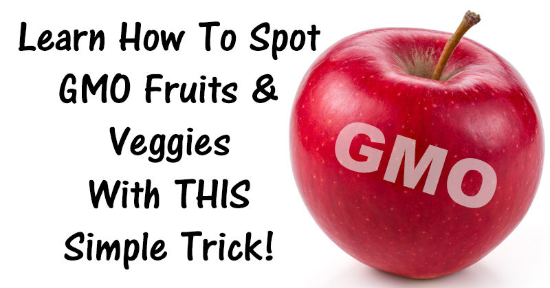 spot GMO FI