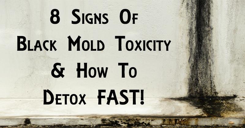 black mold toxicity FI