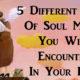 5 soul mates FI