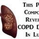 COPD damage FI