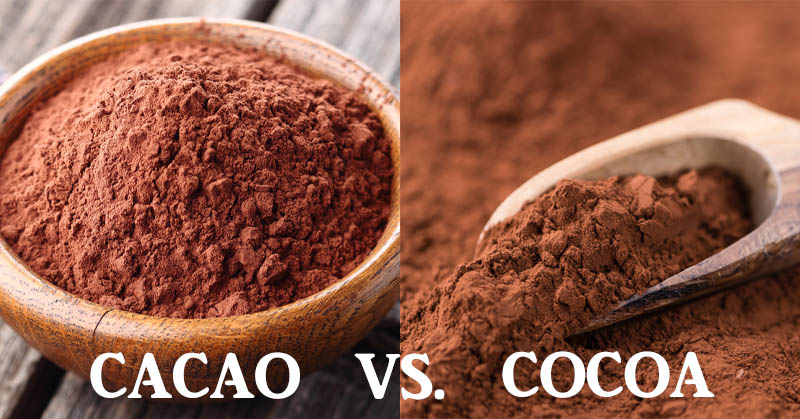 cacao cocoa FI