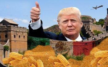Mexico Retaliates Against Trump's Wall, Refuses To Buy American Corn