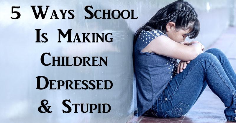 school stupid FI