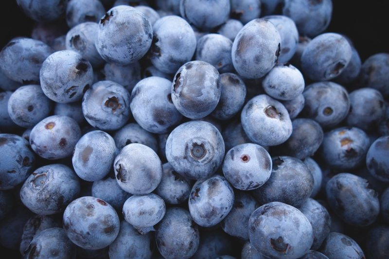 blueberries diabetes