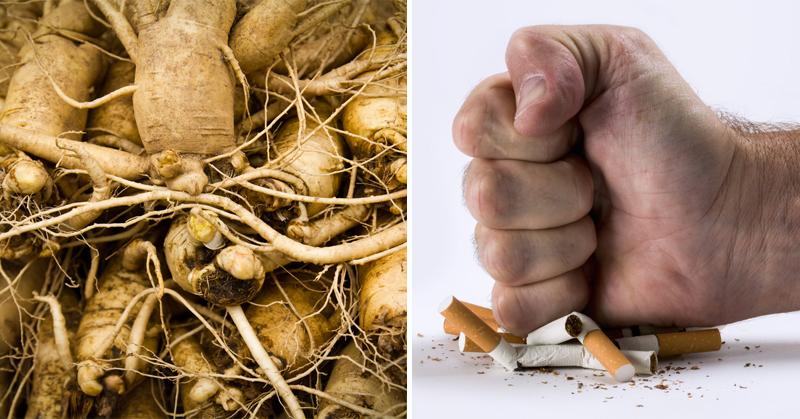 herb quit smoking FI