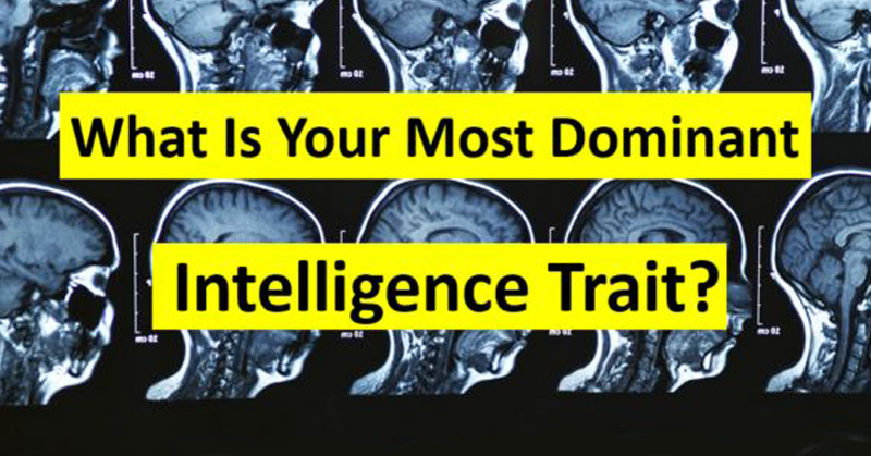 dominant intelligence FI