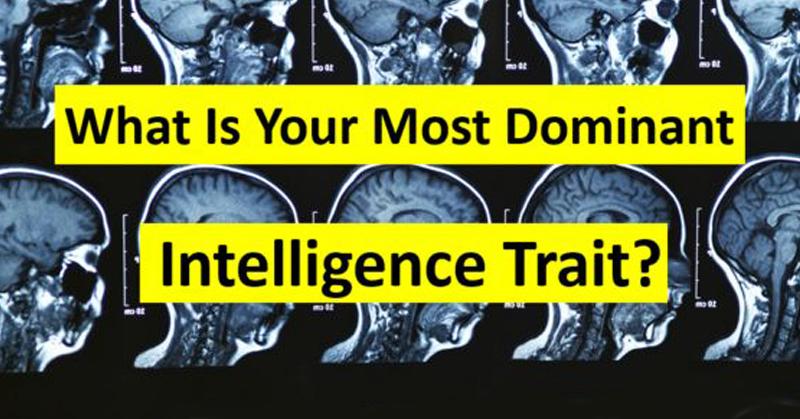 dominant intelligence FI