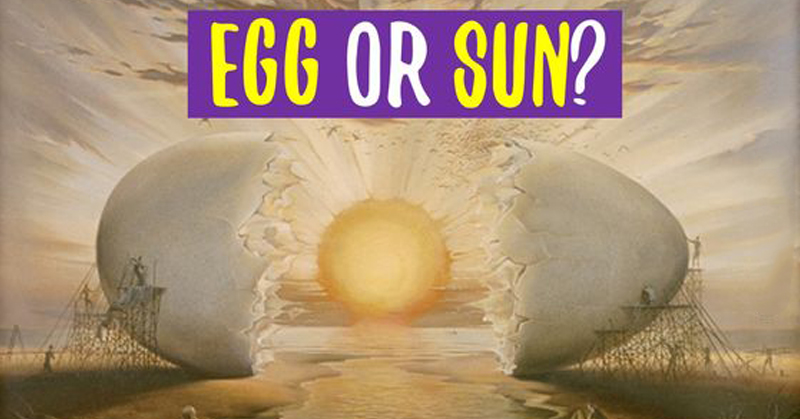 egg perception FI