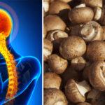 foods migraines FI