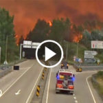 forest fire portugal FI