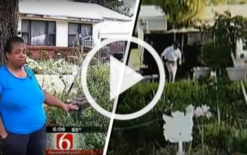 TRAGIC: Woman Devastated After Government Cuts Down Her Medicinal, Edible Garden