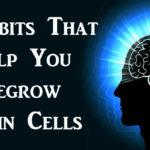 regrow brain FI
