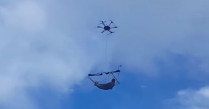 drone hammock FI