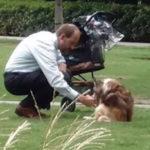 owner dog FI