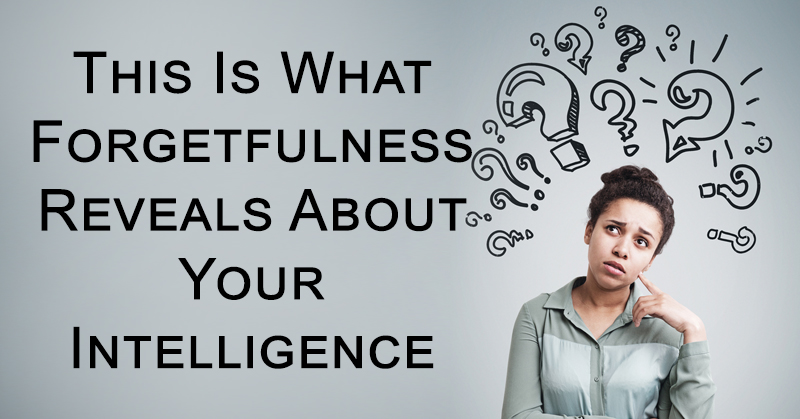 forgetfullness intelligence FI