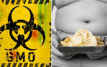 """Research Finds """"Healthy"""" Chip Brand Tested 100% Positive For GMO Herbicide"""