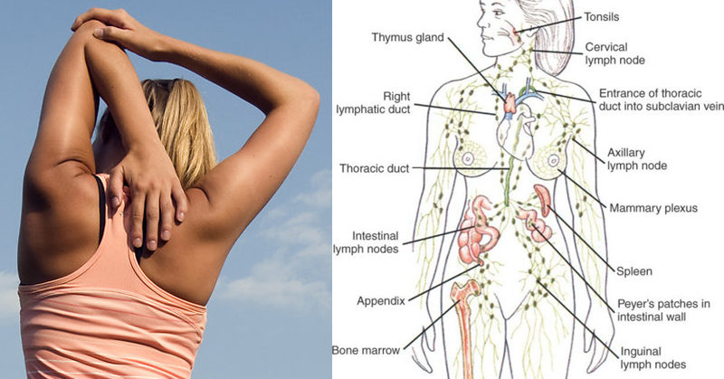 The Powerful Exercise That Drains Your Lymphatic System & Boosts ...
