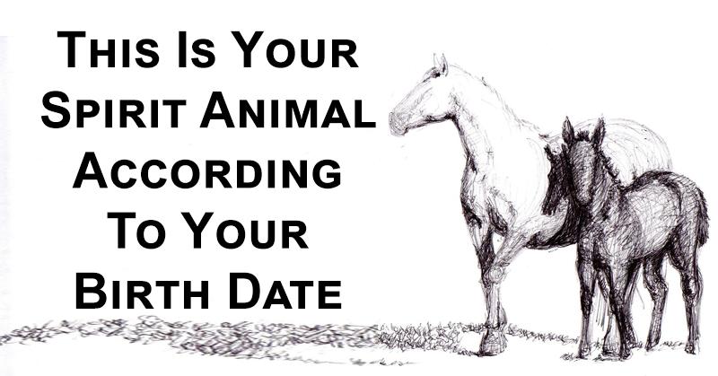 spirit animal birth date FI