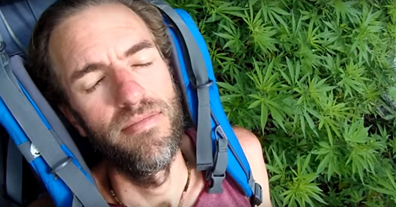 traveler marijuana FI