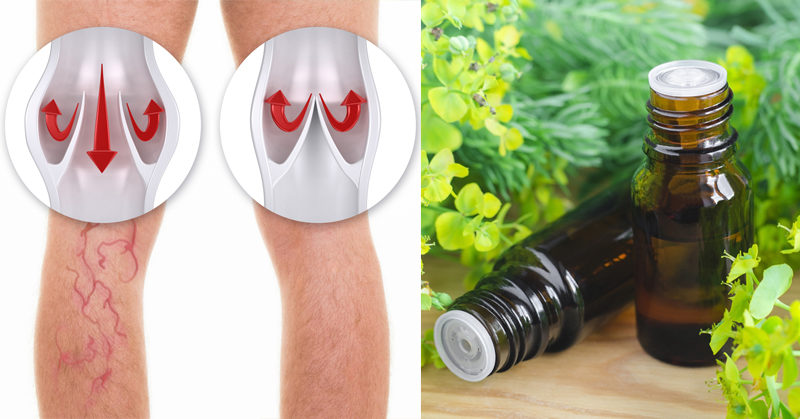 cypress essential oil FI