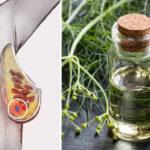 fennel essential oil FI