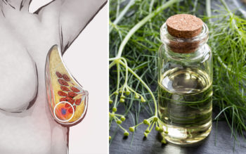 Fennel Essential Oil: 6 Health Benefits