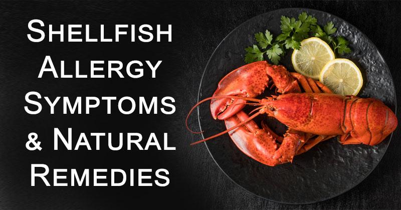 shellfish allergy FI