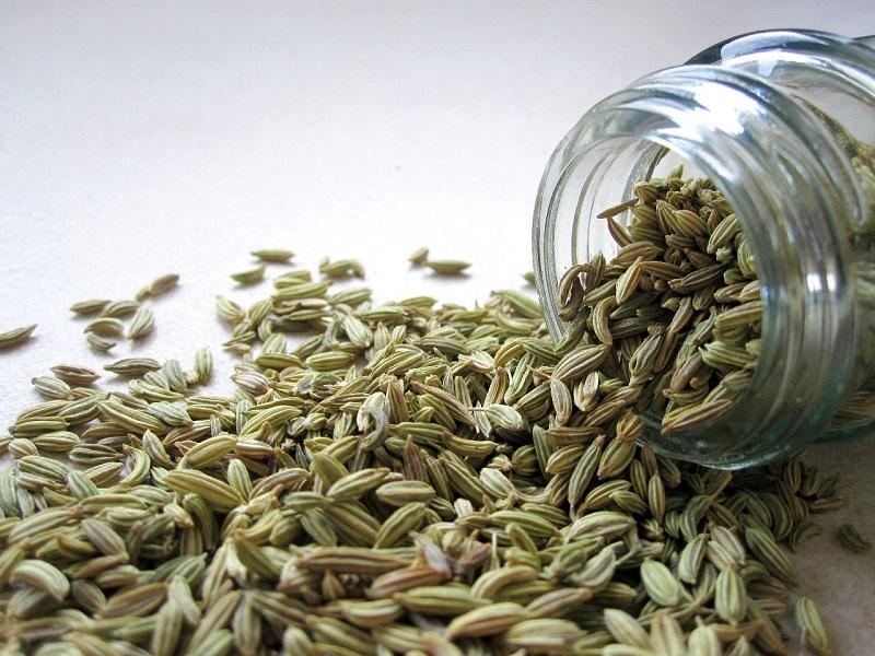 gastritis fennel