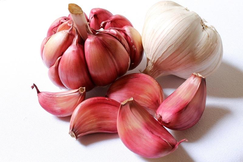 gastritis garlic
