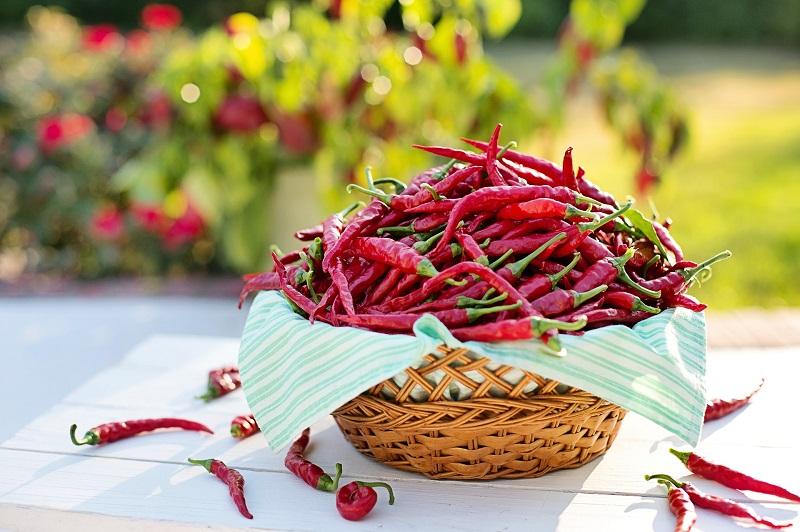 gastritis spicy food