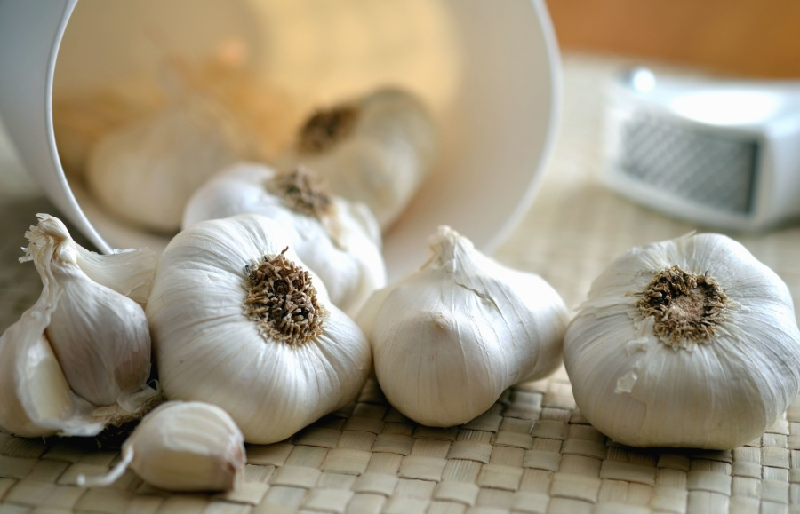lymphadenitis garlic