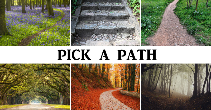 The Path You Pick Reveals Your Personality & Future - David Avocado Wolfe