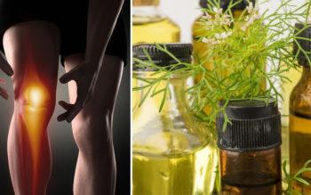 Coriander Essential Oil: 10 Benefits & Uses