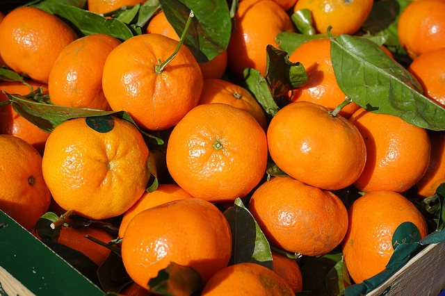Tangerine essential oil fruit