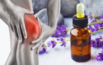 Lavandin Essential Oil: 8 Uses & Benefits
