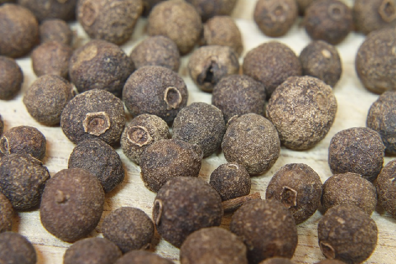 pimento essential oil seeds