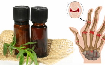 Tarragon Essential Oil: 9 Health Benefits