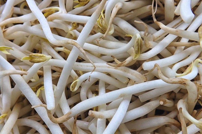 bean sprouts health benefits