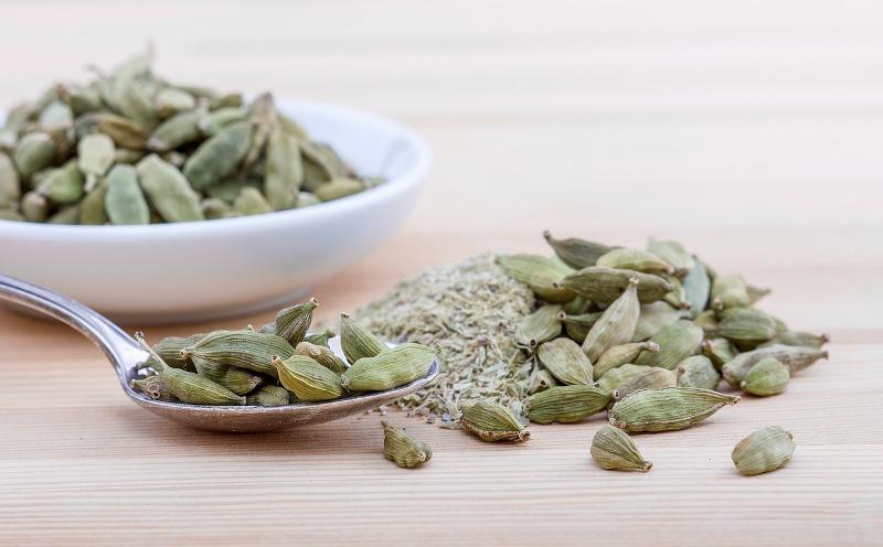 cardamom essential oil plant