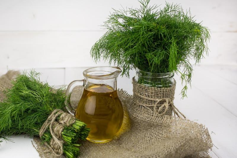Dill essential oil tea