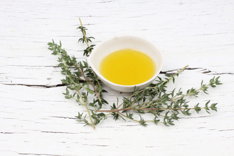 toxoplasmosis treatment thyme oil