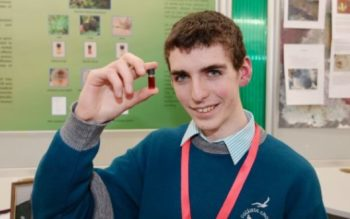 Irish Teen Wins Top Science Prize For Natural Substance That Kills Antibiotic Resistant Bacteria