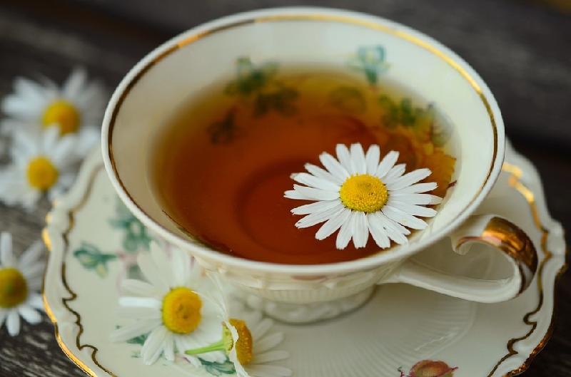 Dandelion tea health benefits