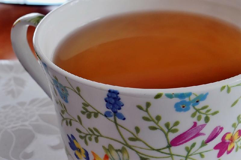 pau d'arco tea benefits