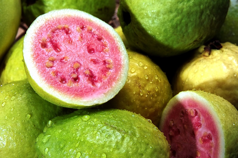guava benefits