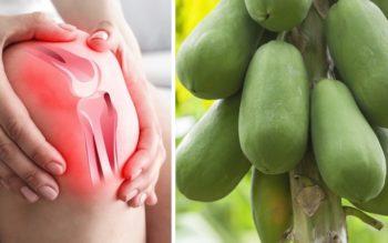 Papaya: 10 Health Benefits