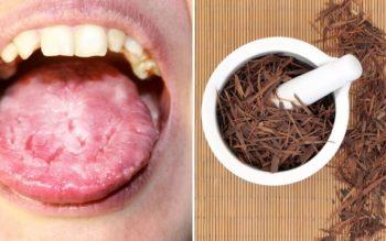 Pau D'arco Tea: 7 Benefits & Uses