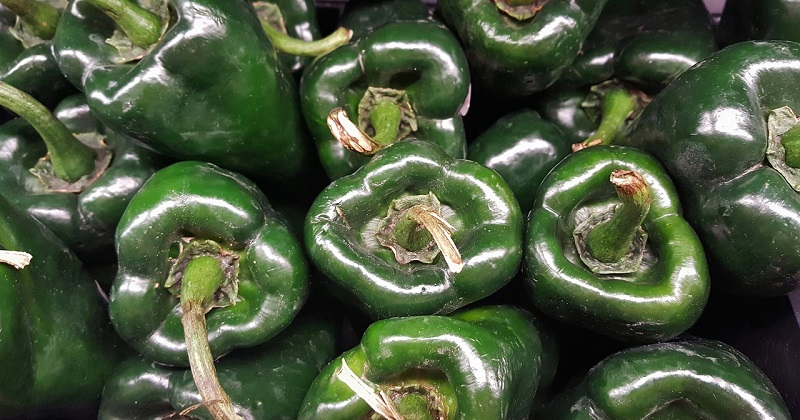 Poblano Pepper Benefits
