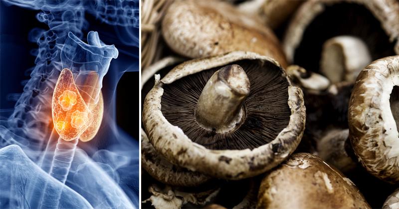 portobello mushrooms FI